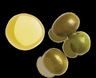 OLIVE-DERIVED SQUALANE